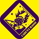 Logo caduta massi